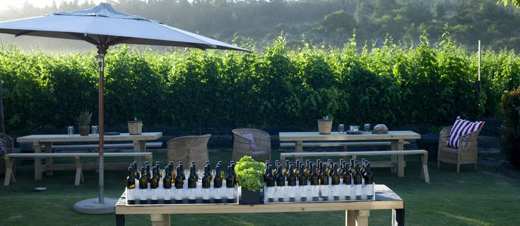 Blinis & Bubbly in the Newstead Vineyards Plettenberg Bay
