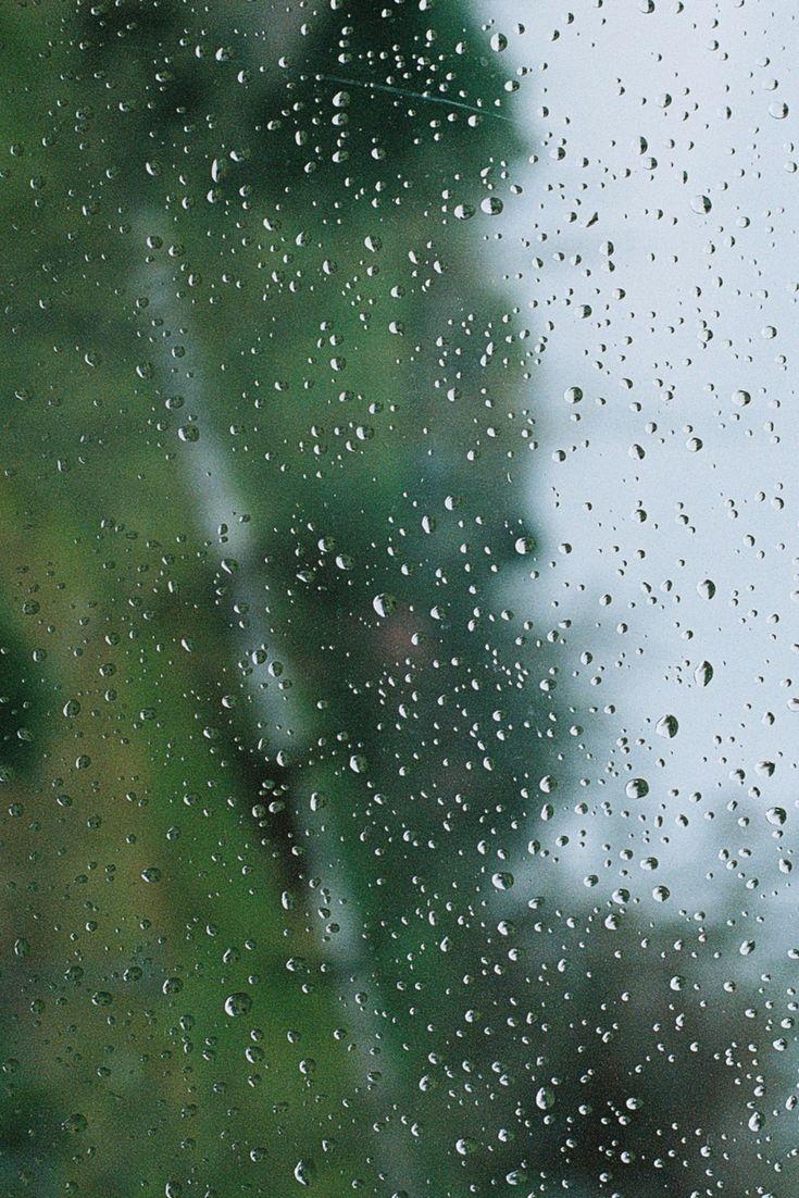 Rainy Days | film photography | 35mm photography | film.lav