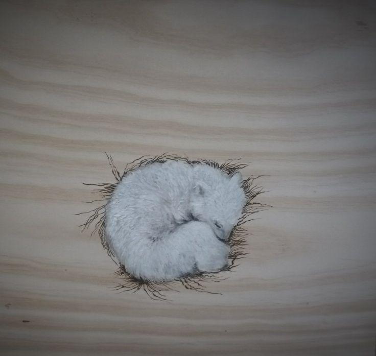 Baby Polar Bear in Nest