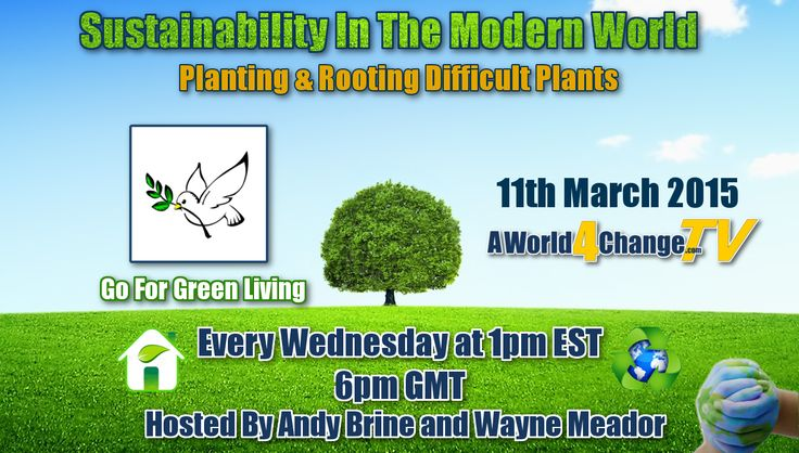 "Episode 21 - Join Hosts +Andy Brine and +Wayne Meador LIVE on Wednesday, March 11th at 1pm EST | 6pm GMT as we talk with Daniel Smith of +goforgreenliving about how he's going  ""off-the-grid"" and producing more than enough food for his family. #Propagating #Rooting #Gardening #Planting"