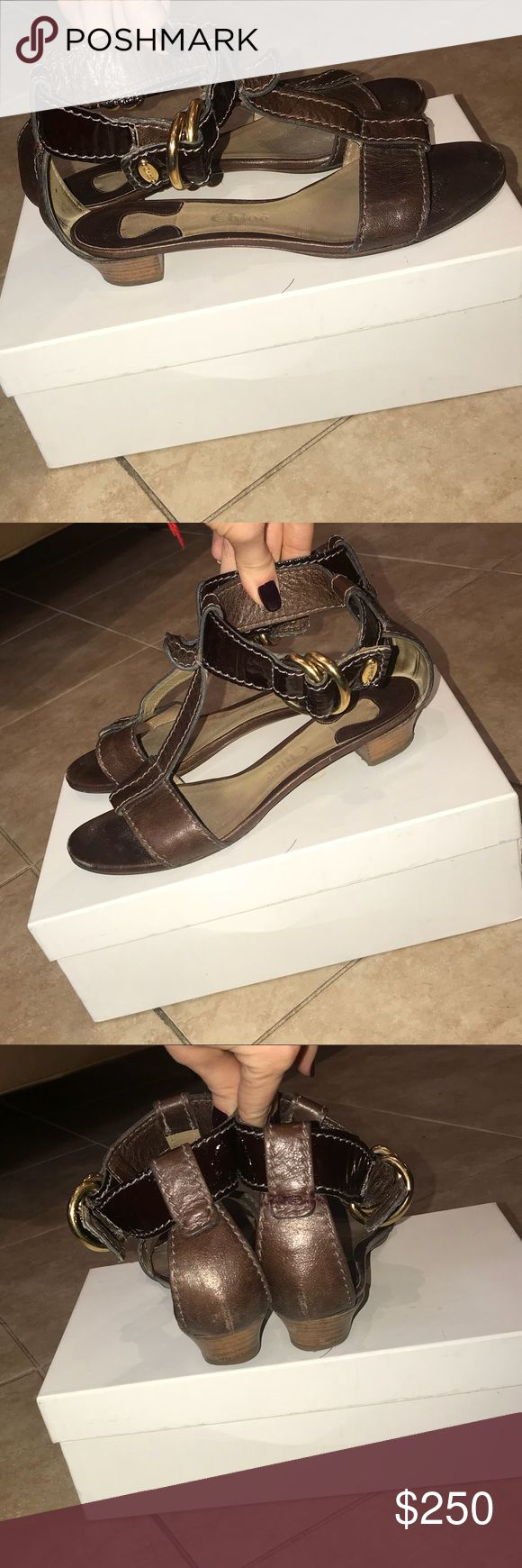 Chloe Brown Leather Sandals Size 37 Chloe Wing Calf Sandals with Gold Buckle Detailing Size 37 Color Dark Brown Made in Italy In great condition! Will accept reasonable offers! Chloe Shoes Sandals