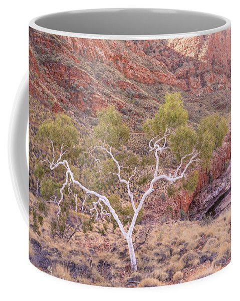 Gumtree Coffee Mug featuring the photograph Ghost Gum by Racheal Christian