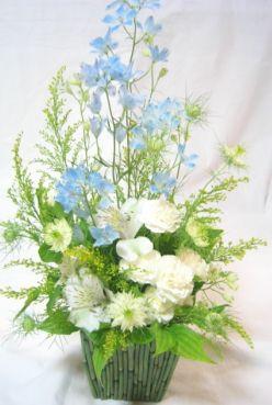 ブルーと白の清楚な花
