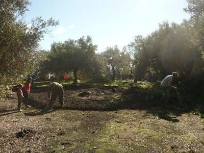 Permacultura Sicilia