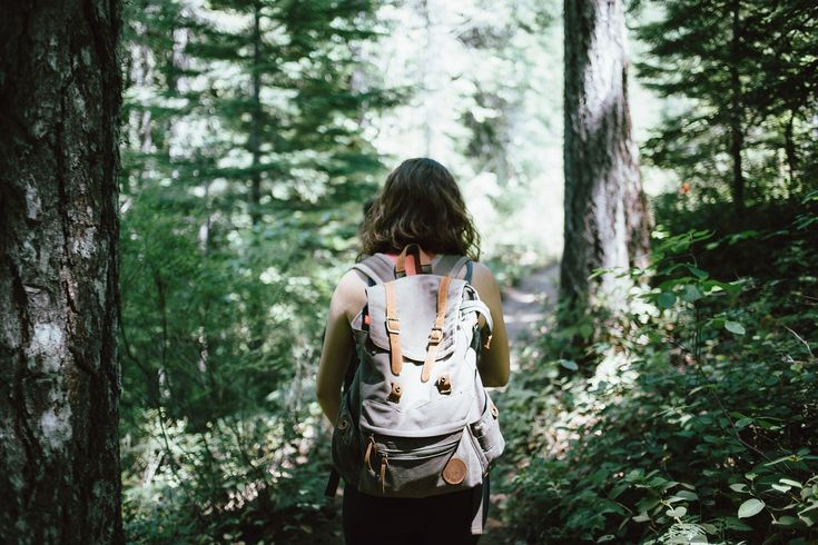 5 Reasons Why You Should Get Out in Nature | Dizzylife Retreats |  Nature is where we belong. We feel immediately better as the wind blows through our hair, the sun warms our skins, and the beach cools our feet. It is important to appreciate and enjoy it. Here are 5 reasons why you should get out in nature...