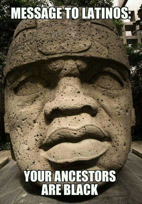 682ceaf57adc6c8b1f9f16edf5081ce3 native american meme 43 best olmecs images on pinterest black history, african