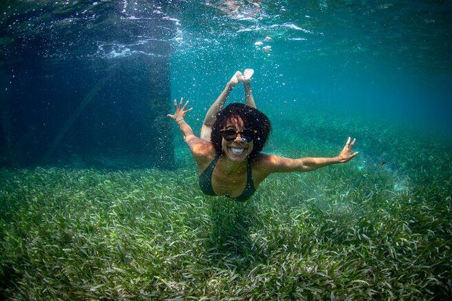 Dr Johnson A Marine Biologist Environmental Scientist Ocean Biology Dissertation Ideas
