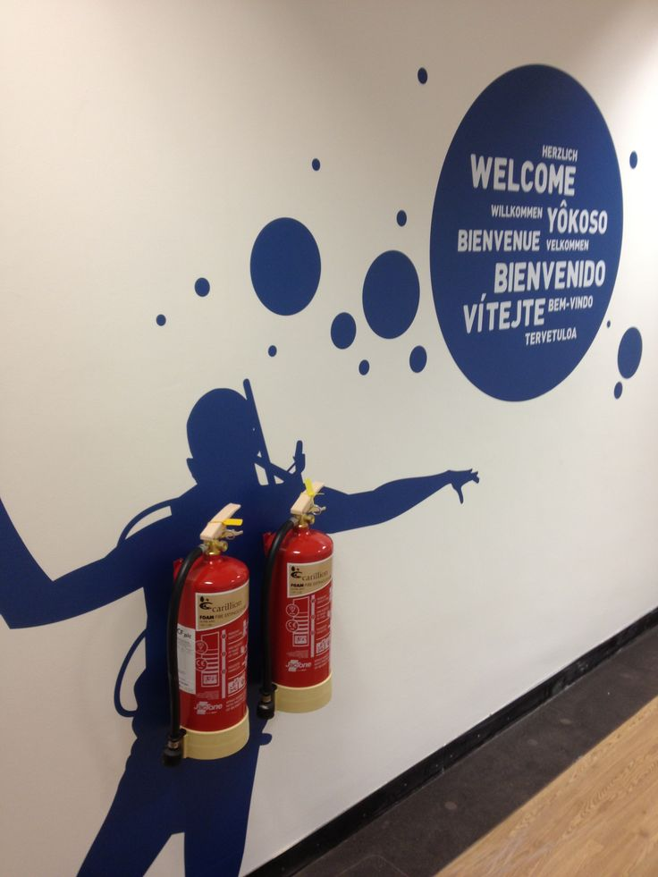 Environmental graphics are a great way to create a fun and inspiring workplace and keep your employees happy!