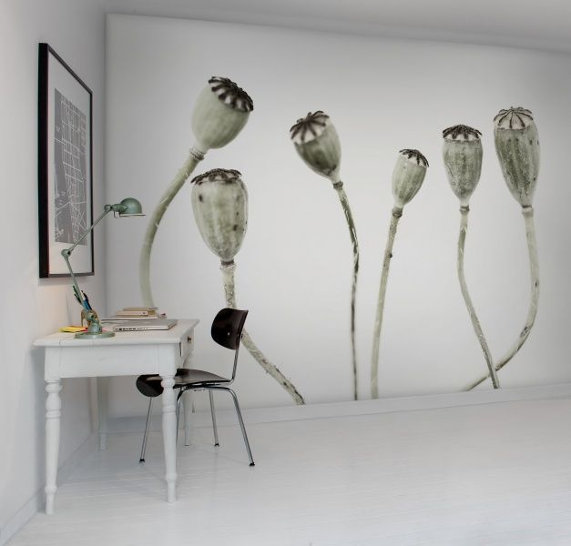 Hey, bekijk deze mural van Rebel Walls, Simple Seedpod! #rebelwalls #behang #mural