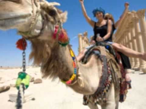 http://egyptholidaystravel.beepworld.de/ All Inclusive Holiday Egypt FACTS ABOUT EGYPT ALL INCLUSIVE ALL INCLUSIVE HOLIDAY TO EGYPT are Ensured to Offer You a Different Experience