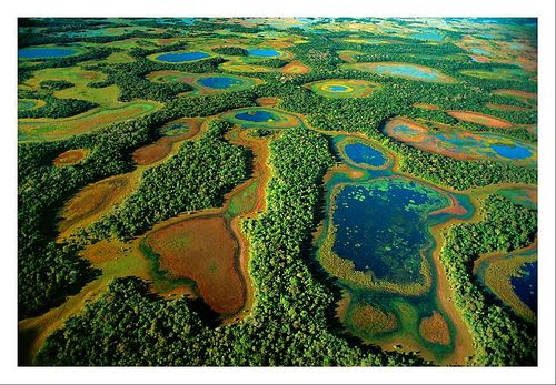 """Pantanal, Brazil. """"The Pantanal is a stunning marshy wilderness positively teeming with wildlife. The region is South America's answer to the African savannas and one of the continent's most fantastic natural  attractions, best viewed from a boat or canoe."""""""