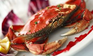 Crab Sinbad's Restaurant Pier 2 The Embarcadero St San Francisco CA 94111 415-781-2555 sinbadsrestaurant.com  Along with our fresh fish selection and extensive lunch, dinner, and weekend brunch menus, we also feature a full bar and an exclusive wine list to perfectly complement your entrée. Enjoy an authentic San Francisco dining experience with unsurpassed Bay view.  #delicious #sinbadsrestaurant #freshseafood #seafood #sanfransisco #waterfront #crab