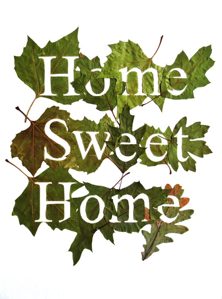 Fine Oddity - Home Sweet Home, made from hand cut leaves
