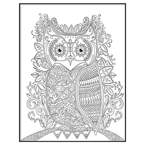 434 Best Coloring Owl Images On Pinterest