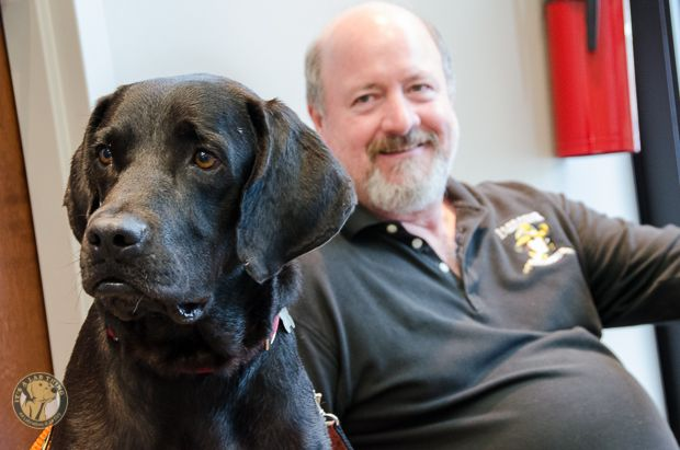 A Day with Labrador Rescues | Its a Lab Thing