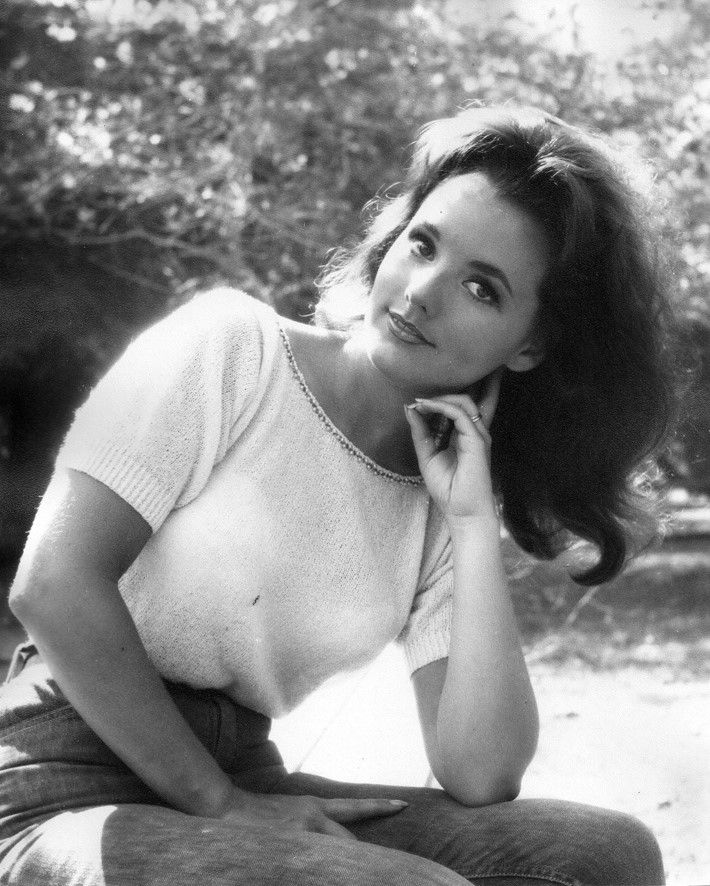 Best mary ann dawn wells gilligans island images on pinterest
