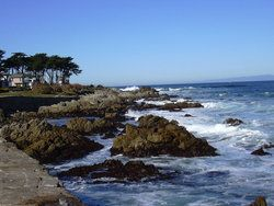 View from Lover's Point: Montery California. Love to paint here and the general coastal area.
