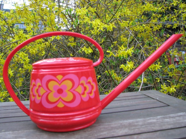 Rad watering can: Arrosoir