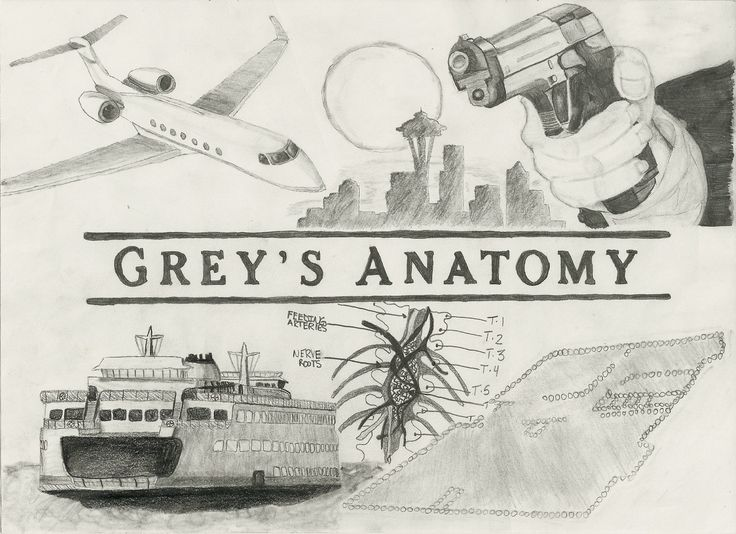Grays Anatomy Coloring Book : 296 best drawings and sketches images on pinterest
