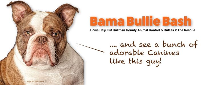 BAMA BULLIE BASH: A Funraiser and supply drive to benefit Bullies 2 the Rescue Alabama and the Cullman County Animal Shelter.  This event features: ★ Bullie Kissing Booth ★ Best Dressed Bullie Contest ★ Gift Basket Raffle