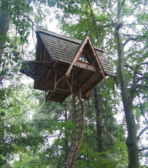Really Cool Tree Houses 28 best cool treehouses images on pinterest | treehouses