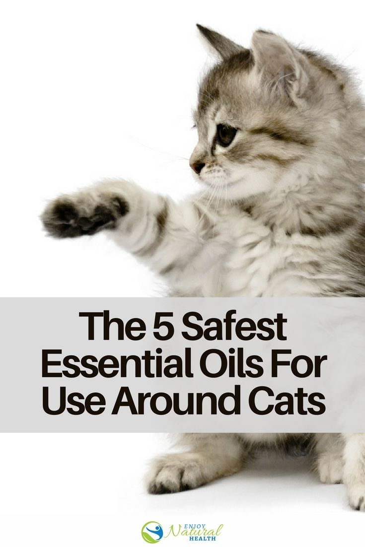 963 Best Essential Oils For Health Images On Pinterest