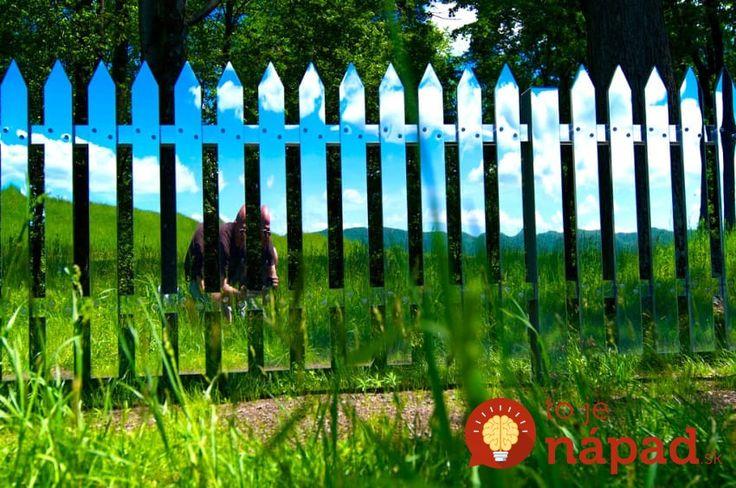Kreatívne nápady, ako premeniť obyčajný plot na nepoznanie. Inšpirujte sa jedinečnými nápadmi. :-)