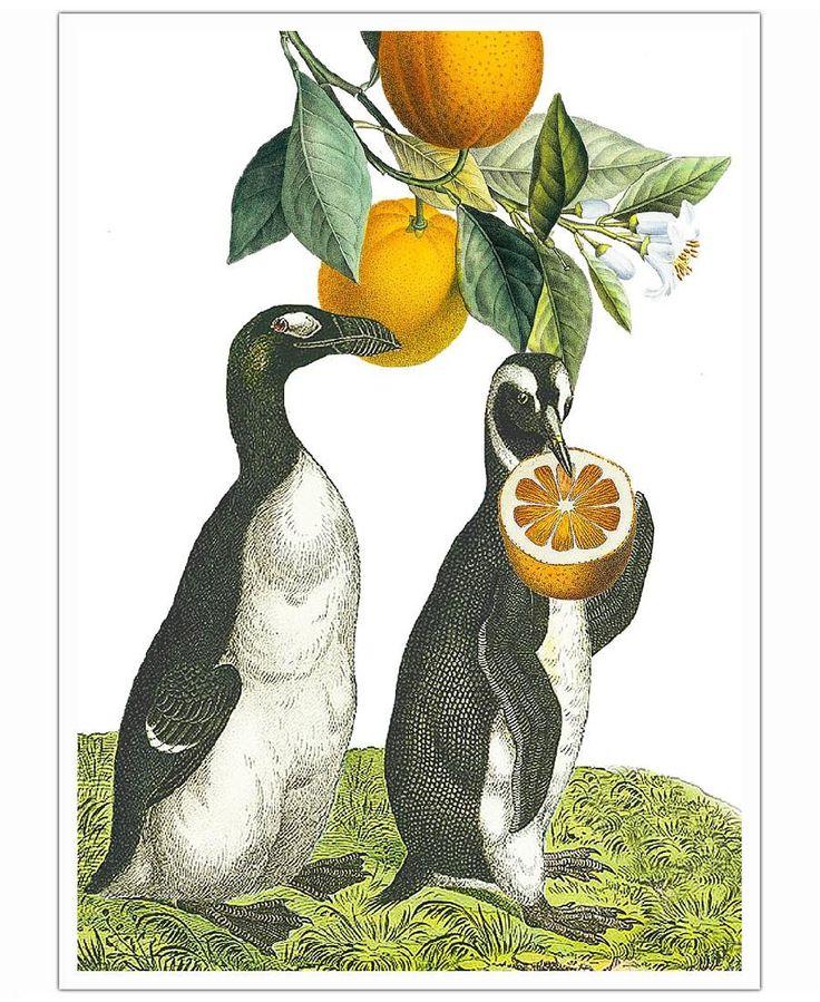 Oranges 2 of Rococco LA now on JUNIQE!