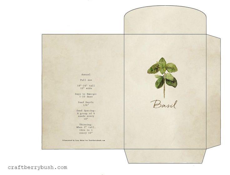 1000+ images about Botāniskie printi on Pinterest | Watercolour ...