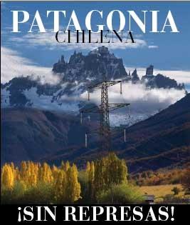 save patagonia