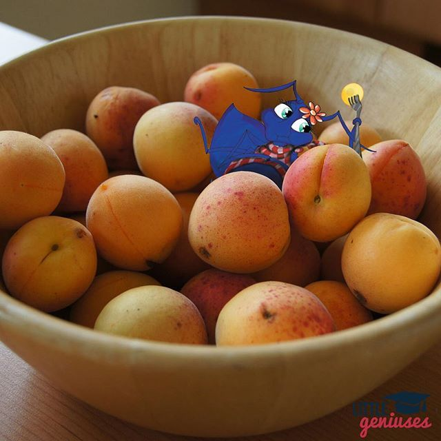 """Anna loves playing in her bowl of apricots! #design #phonics #fun #littlegeniuses #apricot #healthy #education. For more adventures, check out Anna's Amazing Adventure, the first book in Little Geniuses' """"A Fun Phonics Series""""."""