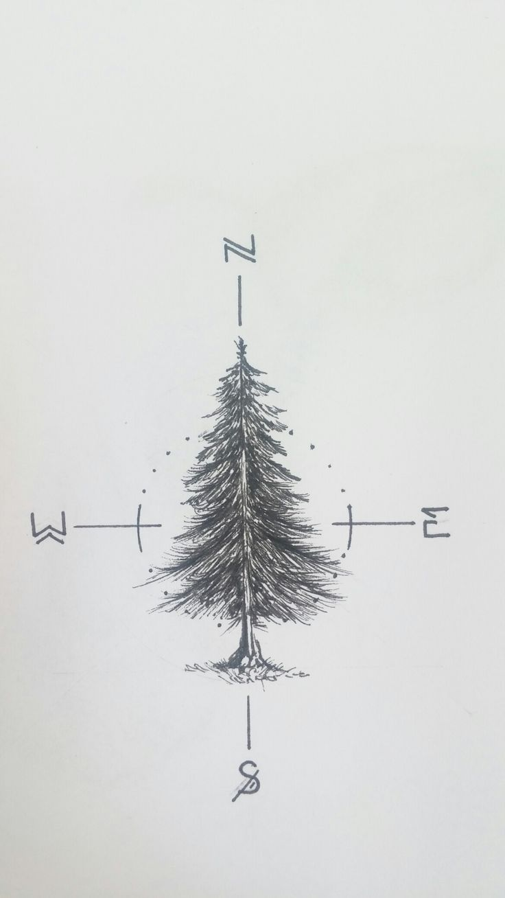Tatto Ideas 2017  Working on a fir tree tattoo for myself _____________________________ #fir