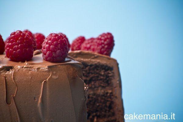 Il connubio cioccolato e lamponi funziona molto bene quando i frutti sono maturi e le note più acide del fondente sono ammorbidite da panna…