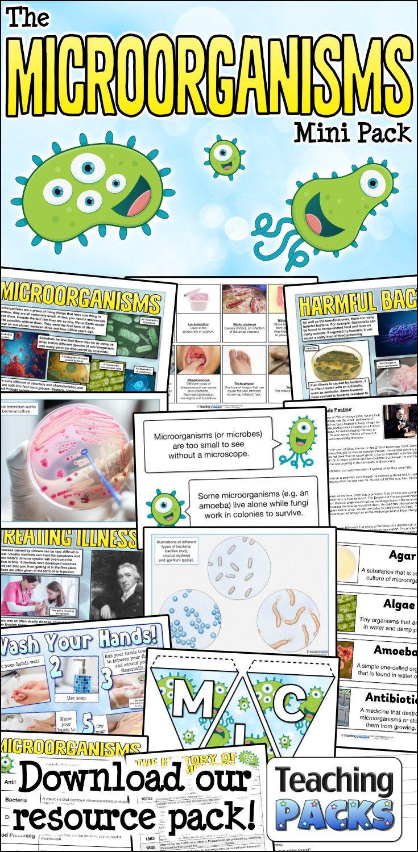 The Microorganisms Teaching Pack   Teaching packs [ 1500 x 735 Pixel ]