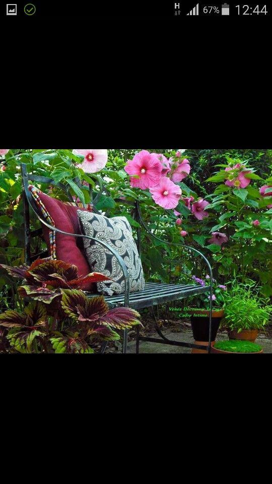 Garden Bahçe