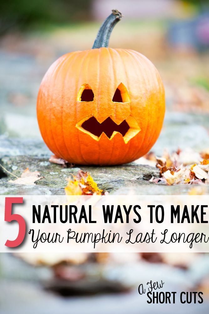 5 Natural Ways To Make Your Pumpkin Last Longer  We, Dont Let And The -4853