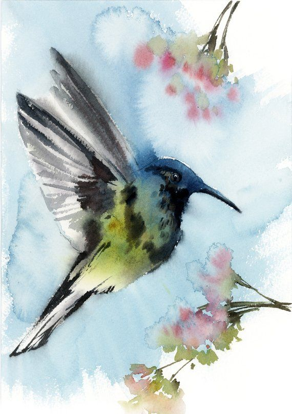 Animals For Watercolor Birds Flying Bird Drawings