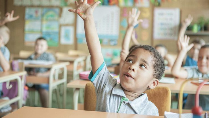 Read the checklist to learn about how to help your child who has auditory processing disorder (APD). Browse other articles about central auditory processing disorder (CAPD) in children.