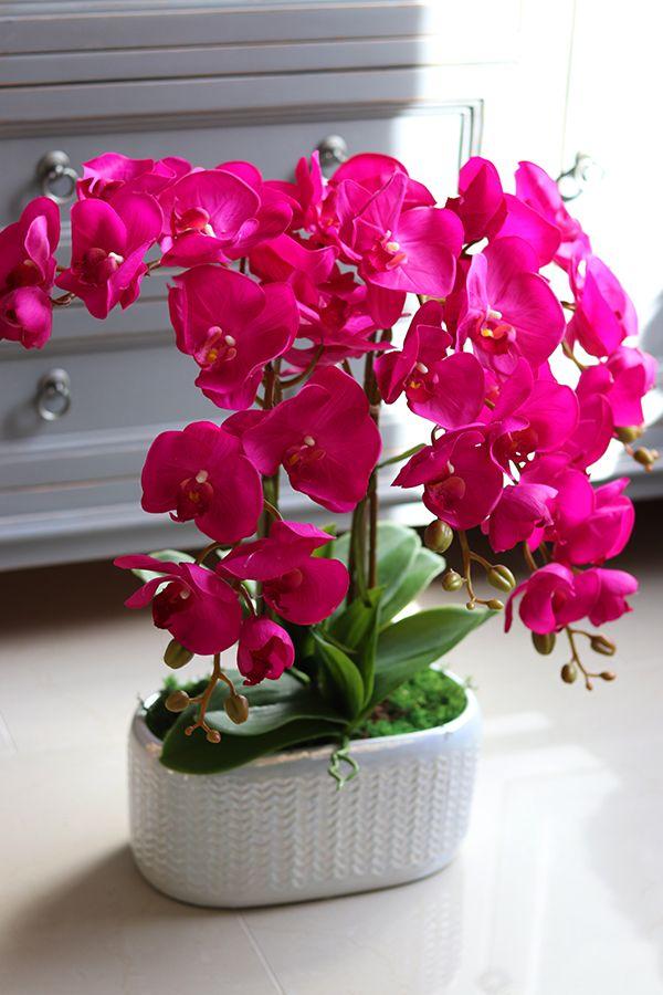Pin Em Sztuczne Kwiaty Doniczkowe