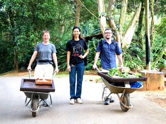 Volunteers getting stuck in on our zoo internship in Malaysia http://www.oysterworldwide.com/gap-year/zoo-assistant-internship-in-malaysia/