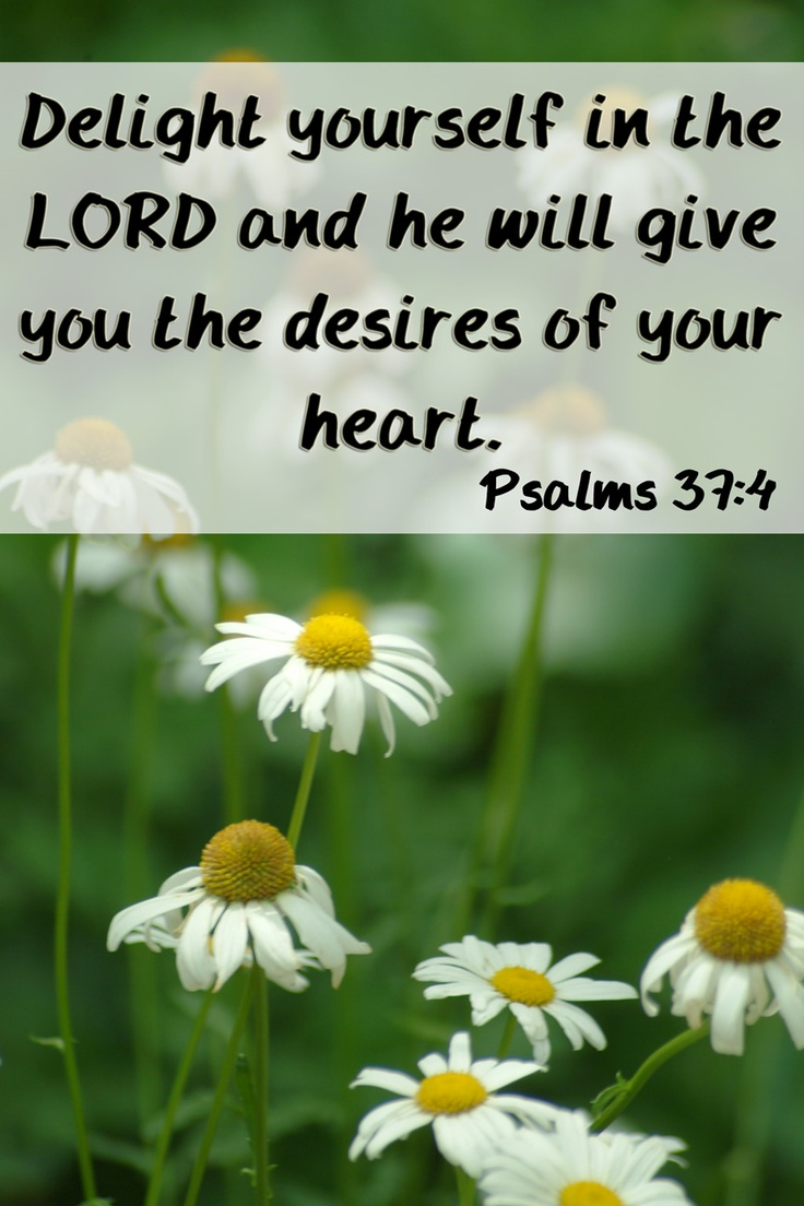 how to delight yourself in the lord Delight yourself in the lord, and he will give you the desires of your heart commit your way to the lord trust in him, and he will act he will bring forth your.