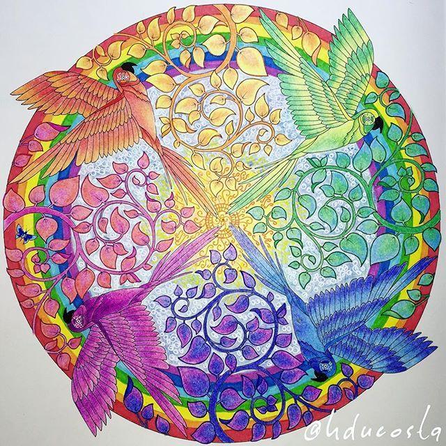 Becreative Coloring Coloringforadults Coloringbook Drawing Doodle Enchantedforest Johannabasford Secretgarden Livrodecolorir