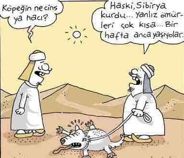 erdil yaşaroğlu:)
