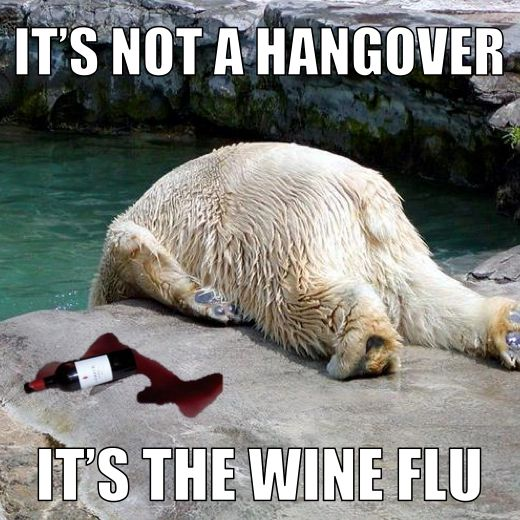 "We've all been here before...    ""It's not a hangover, it's the wine flu."""
