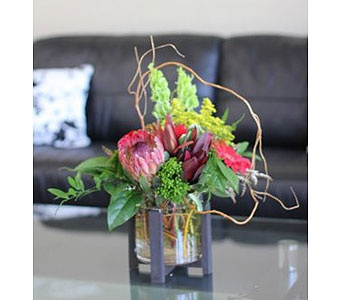Protea Delight: Receptions Flowers, Flowers Delivery, Fast Flowers