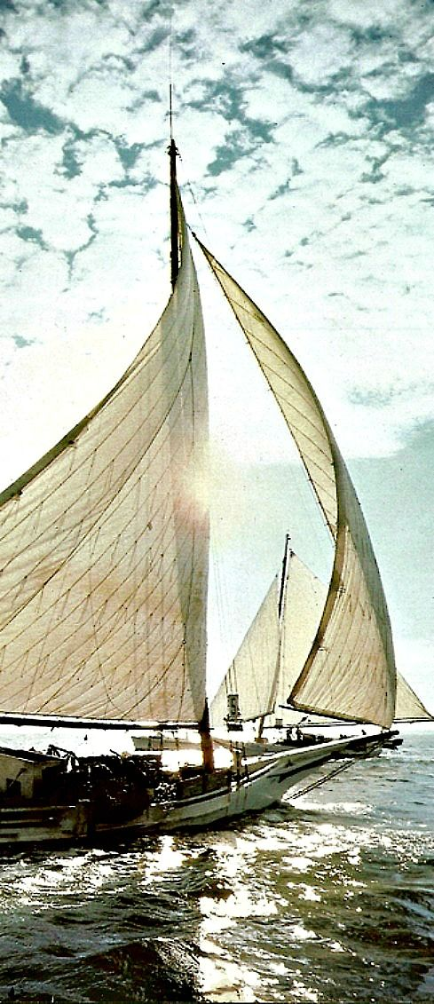 "Gypsy Living Traveling In Style| Serafini Amelia| A Gypsy Travels-""A Gypsy Adventure""- Sail Boat-Sailing"