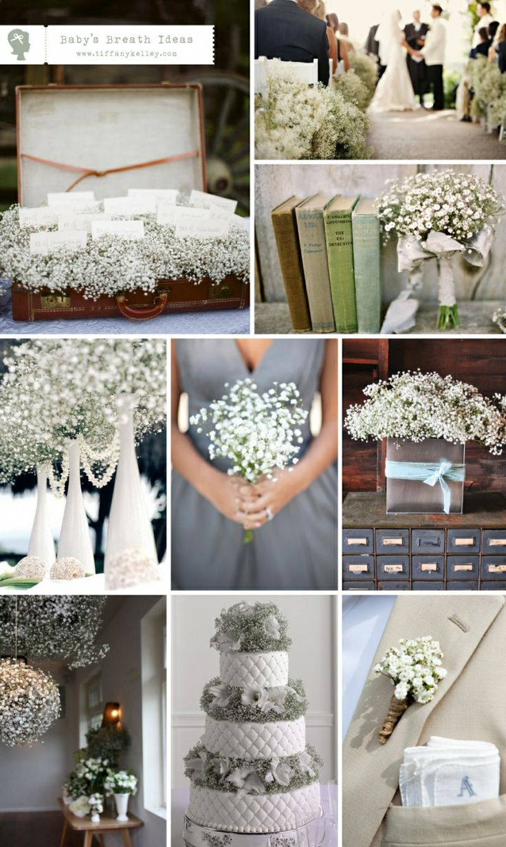 Only flower i know im not allergic to! I love baby's breath, plus flowers get expensive and baby's breath is affordable.  I like the idea of using it to decorate the aisle.  The tall white vases are pretty too.