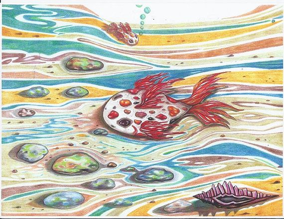 Papa and Baby Fish Colored Pencil Art Print by DreanasDragonflyPie, $15.00