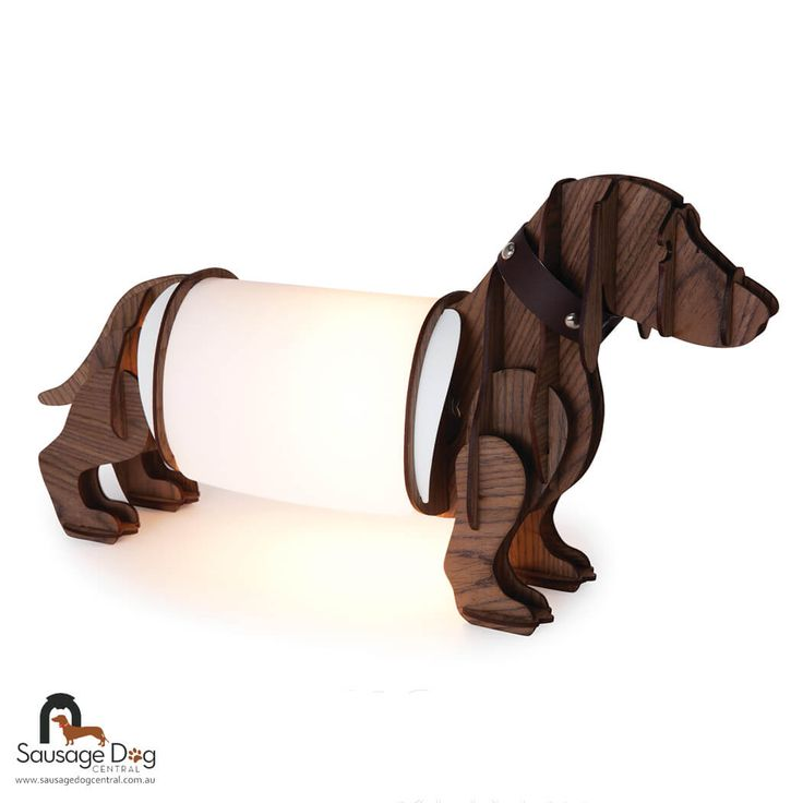 290 best images about doxies on pinterest weenie dogs sausage dogs and wire haired dachshund - Dachshund lamp ...