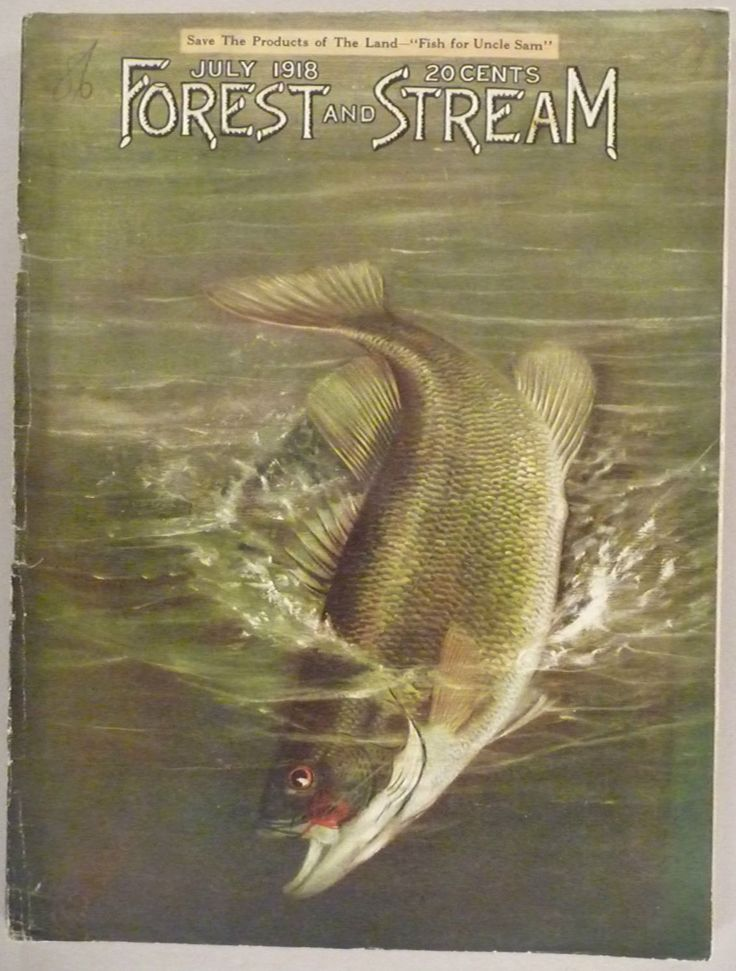 222 best vintage hunting and fishing magazine covers for Free fishing magazines